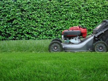 Geelong lawn mowing 0438 351 102 for Winter garden maintenance